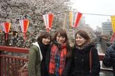 【2013東京賞花】 Day2:好心的日本人幫我們拍的