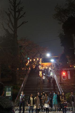 【2013東京賞花】Day1:tokyo day1 (81).JPG