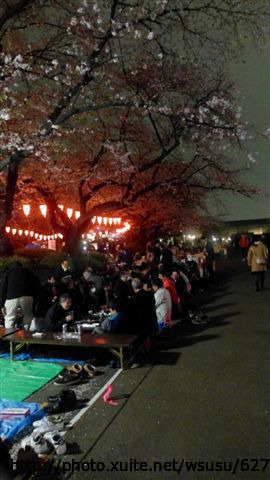 【2013東京賞花】Day1:tokyo day1 (41).JPG