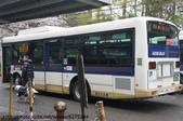 【2013東京賞花】 Day2:坐調34號公車很快就到深大寺了