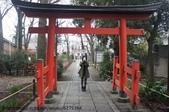 【2013東京賞花】 Day2:有人硬是卡在中間