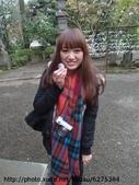 【2013東京賞花】 Day2:達摩大小比例尺(?!)