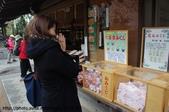 【2013東京賞花】 Day2:陳奐誠心誠意求籤中