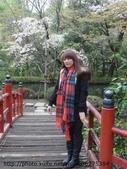 【2013東京賞花】 Day2:這裡很美 我們拍照拍超久~