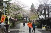 【2013東京賞花】 Day2:小小一條,兩旁都是賣吃的店家