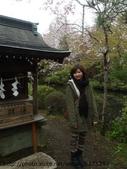 【2013東京賞花】 Day2:兩旁各有一個小神社,很適合穿和服拍照