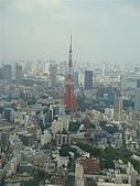 2009出發去東京DAY5:果然最有看頭的就是東京鐵塔