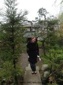 【2013東京賞花】 Day2:神社太小了 搞得好像在小人國