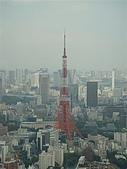 2009出發去東京DAY5:我只能說爵士贏了