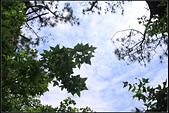 2011_06_11 桃園大溪花海農場:2011_06_11 桃園大溪花海農場009.jpg