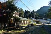 1070923 嘉義阿里山*阿里山森鐵 十字路站~得恩亞納部落~多林站 O行:DSC_2054.JPG