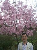 龍之春:CIMG0526.JPG