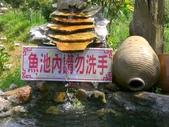 台寶休閒農村景觀:小魚池.JPG