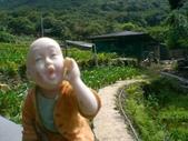台寶休閒農村景觀:後山農場1.JPG