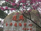小烏來之景:CIMG0598.JPG