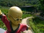 台寶休閒農村景觀:後山農場2.JPG