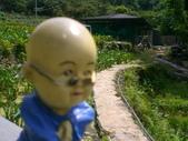 台寶休閒農村景觀:後山農場3.JPG