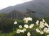 台寶休閒農村景觀:CIMG1248.JPG