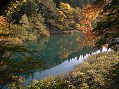 日本東北賞楓2007: