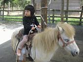 陳帝允的登大人記錄(2009-3歲):IMG_0205.gif