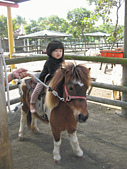 陳帝允的登大人記錄(2009-3歲):IMG_0213.gif