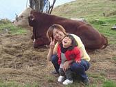 陳帝允與婷雅幫:我的第一個好朋友-婷雅阿姨