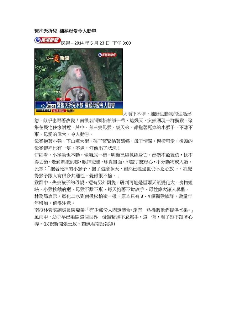 2013玉山獼猴家族資料組:20140523二水緊抱夭折兒 獼猴母愛令人動容.jpg