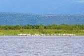108 衣索匹亞 澄姆湖:DSC04150.JPG