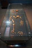 108 衣索匹亞 國家博物館:DSC04550.JPG