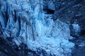 103 紐西蘭 福斯冰河:DSC03716.JPG