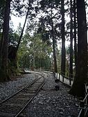 97-太平山國家公園:太平山 茂興懷舊步道