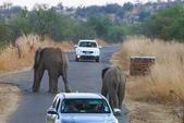 南非 彼蘭斯堡國家公園:1 南非 匹蘭斯堡 DSC00550.JPG