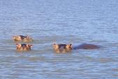 108 衣索匹亞 澄姆湖:DSC04253.JPG