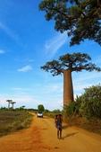 108 馬達加斯加 穆隆達瓦:2 馬 猴麵包樹 DSC04691.JPG