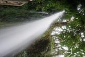 108 哥斯大黎加 亞雷納 拉巴斯瀑布生態園區:DSC06927.JPG