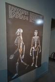 108 衣索匹亞 國家博物館:DSC04548.JPG