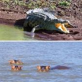 108 衣索匹亞 澄姆湖:相簿封面