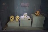 108 衣索匹亞 國家博物館:DSC04551.JPG