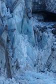 103 紐西蘭 福斯冰河:DSC03729.JPG